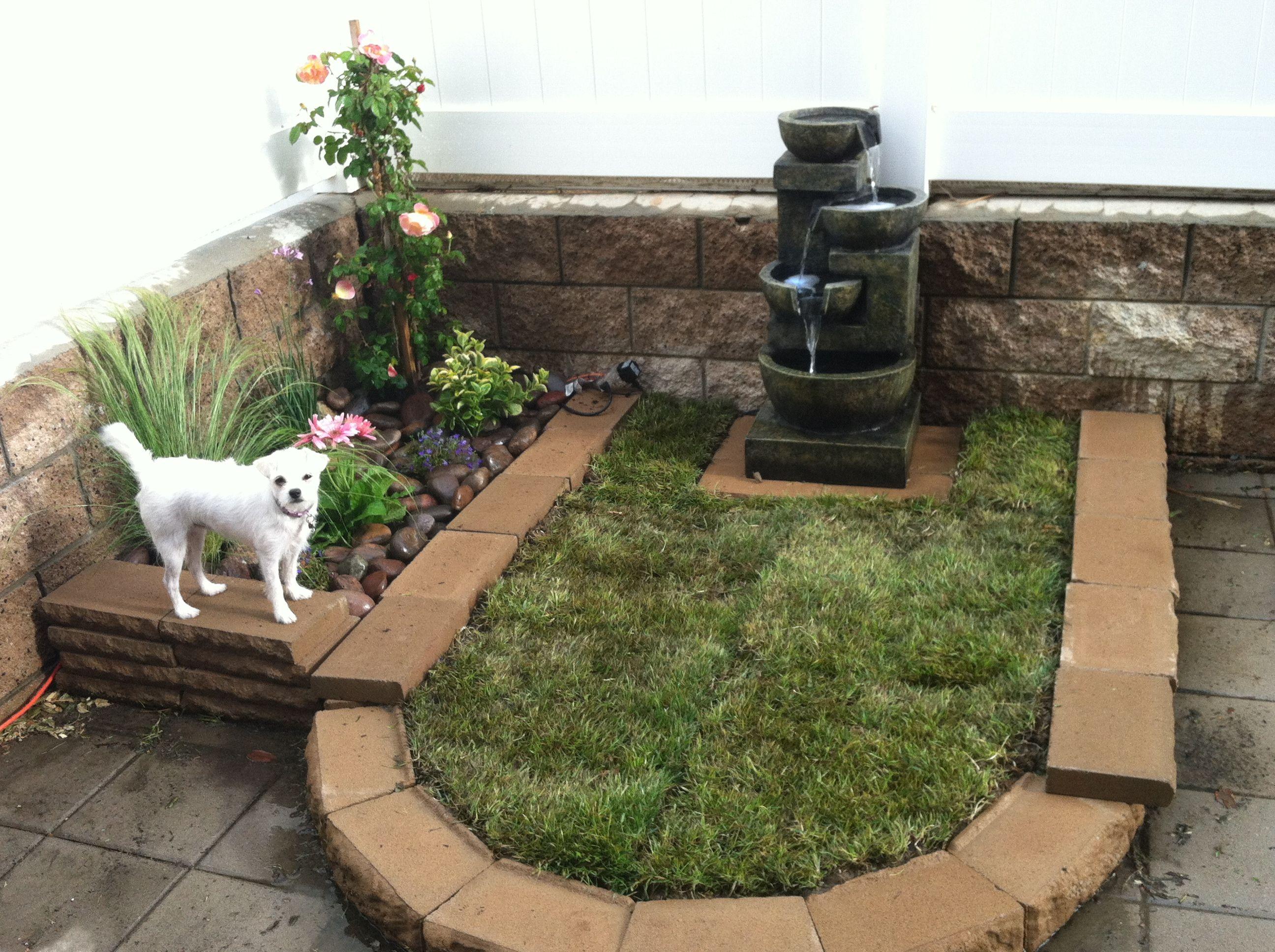 Doggie potty patch and planter   Backyard dog area ...
