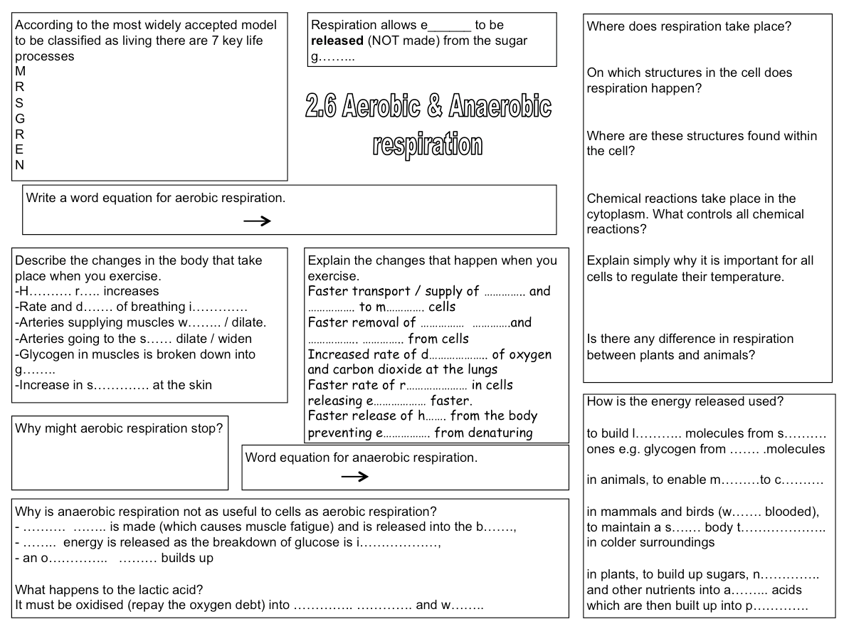Excellent Revision Aid On Respiration With Answers Included
