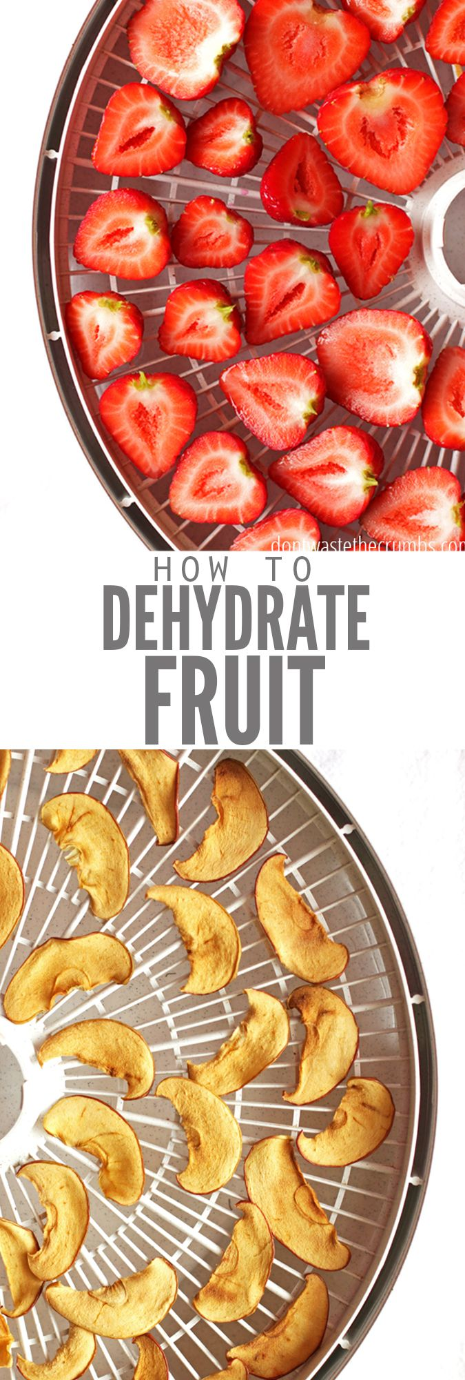 How to Dehydrate Fruit - Grapes, Bananas, Blueberries, Strawberries, Peaches, Mangos It's like fruit candy! Easy DIY tutorial for how to dehydrate fruit in dehydrator, including recipes for apples, strawberries, bananas, peaches, mango, grapes, persimmon, pineapple and blueberries. Making your own dehydrated fruit is a great way to save money too! Some like fruit roll ups or fruit leather, but my favorite is whole fruit, it's almost like fruit gummies!