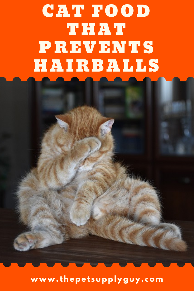 Best Cat Food To Prevent Hairballs The Pet Supply Guy Best Cat Food Cats Cat Food