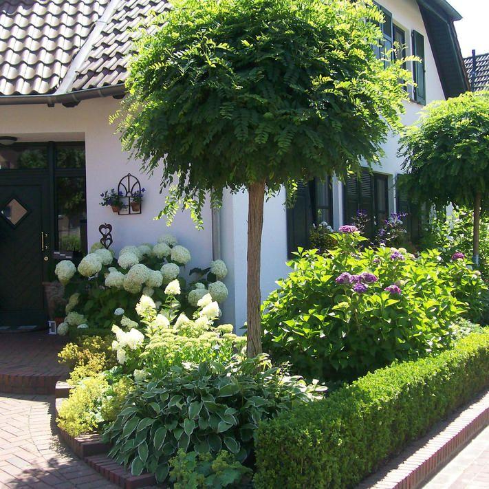 Kugelrobinie: Eleganter Kugelbaum im Kleinformat #vorgartenideen