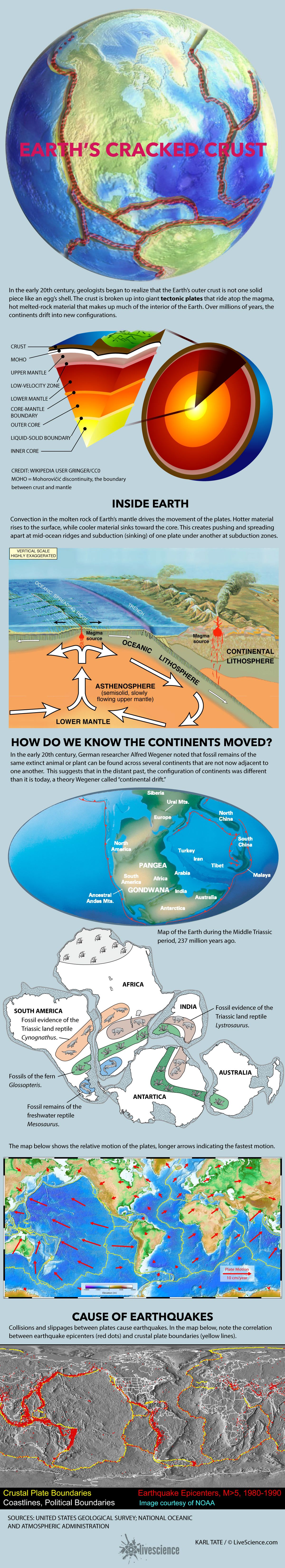 Plate Tectonics And Continental Drift Infographic