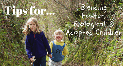 Blending A Foster Child With Children Already In The Home Creating A Family Fostering Children Adopting A Child The Fosters