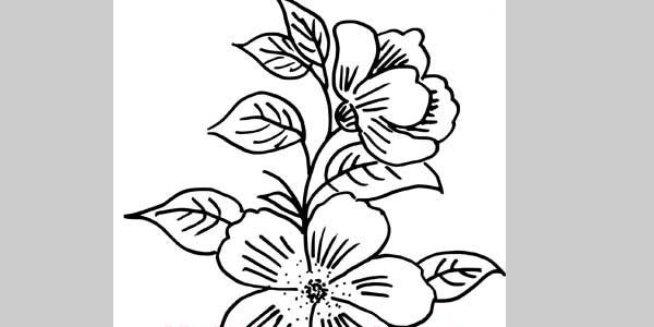 Flower embroidery design 25 sweet hand embroidery designs flower embroidery design 25 sweet hand embroidery designs altavistaventures Images