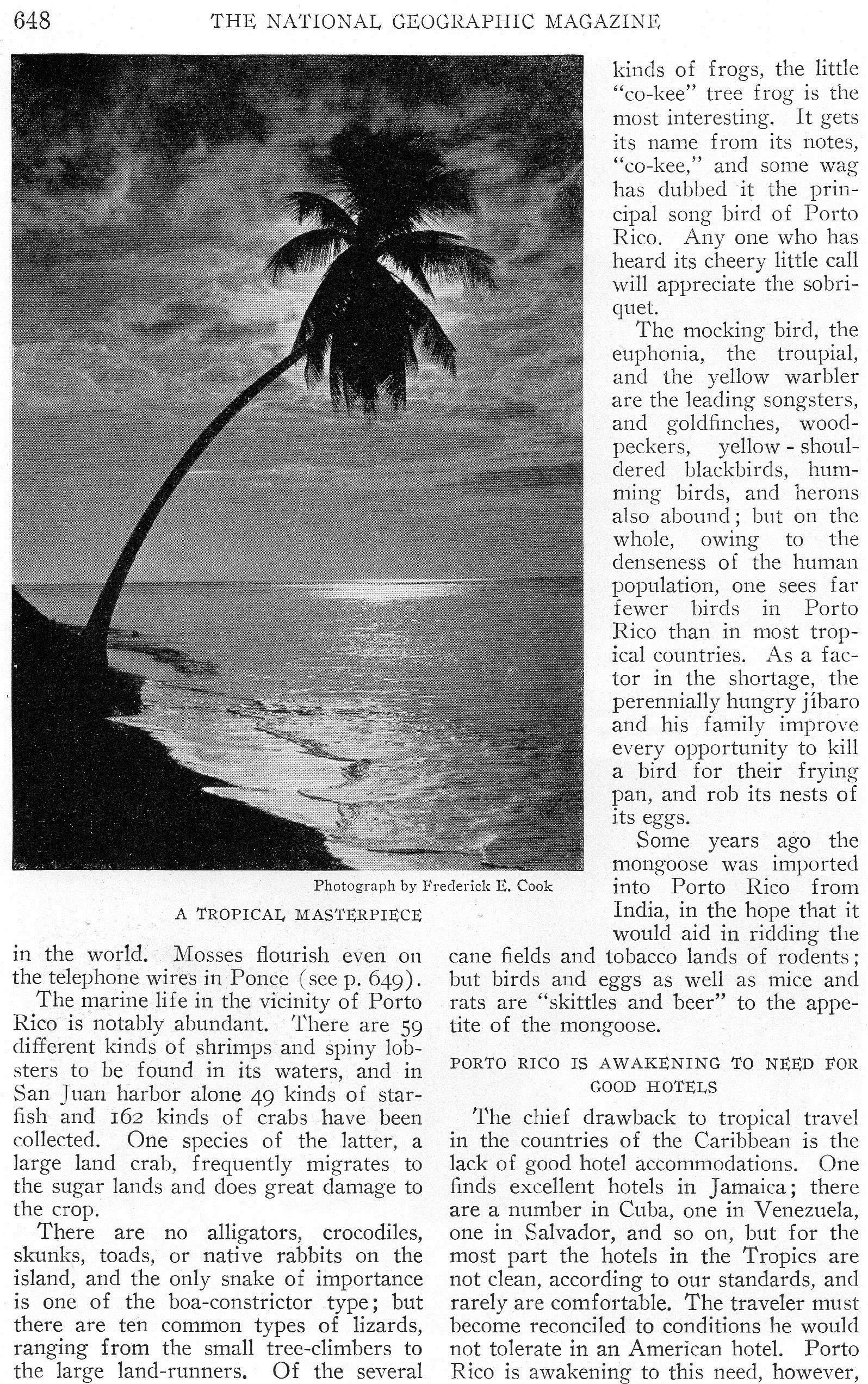 """Puerto Rico, en la portada y bien destacada en la edición de diciembre de 1924 de la revista Estadounidense """"National Geographic"""". ~ Puerto Rico, on the cover & featured in the December 1924 issue of the United States magazine """"National Geographic"""". Pg 648"""