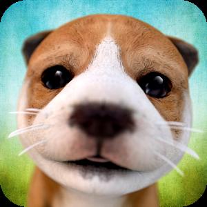 Dog Simulator APK + Data Dogs, Your dog, Big dogs