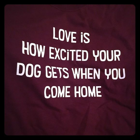 Dog Themed Tshirt Tshirt. Never worn. New, no tags. Got as gift, won't use. Tops Tees - Short Sleeve