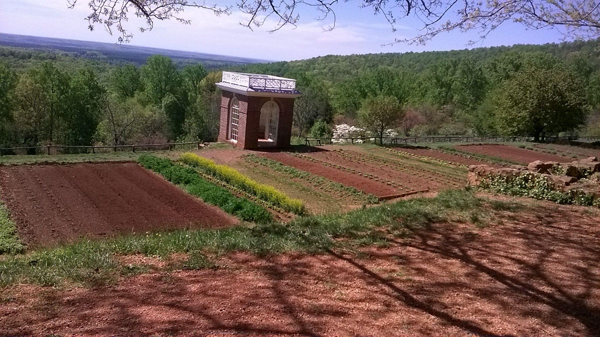 Thomas Jefferson\'s Monticello Vegetable Gardens   Washington D.C. ...