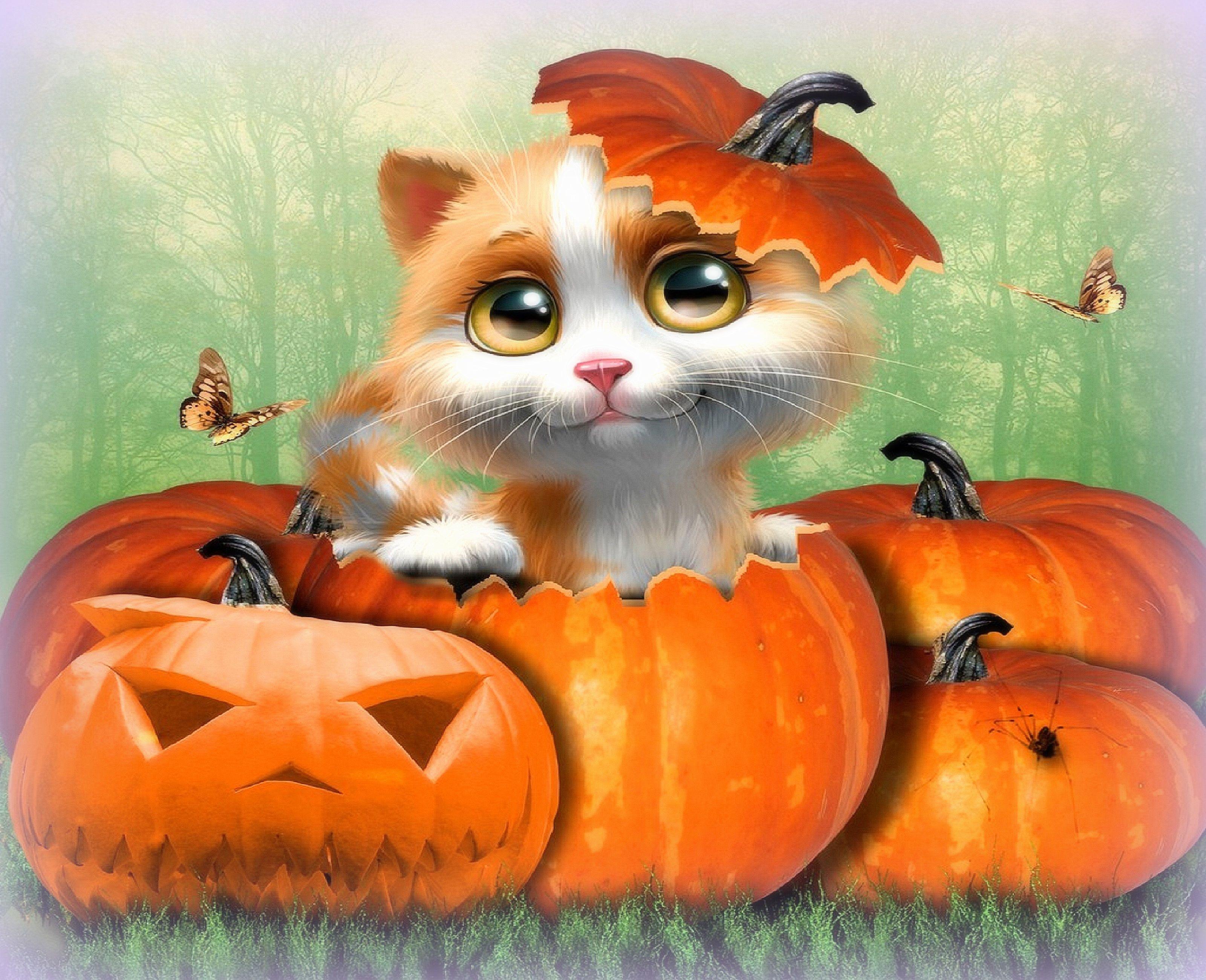 Cute Cat Halloween Desktop Background Wallpapers Hd Free 573575 Halloween Cat Halloween Art Cat Art