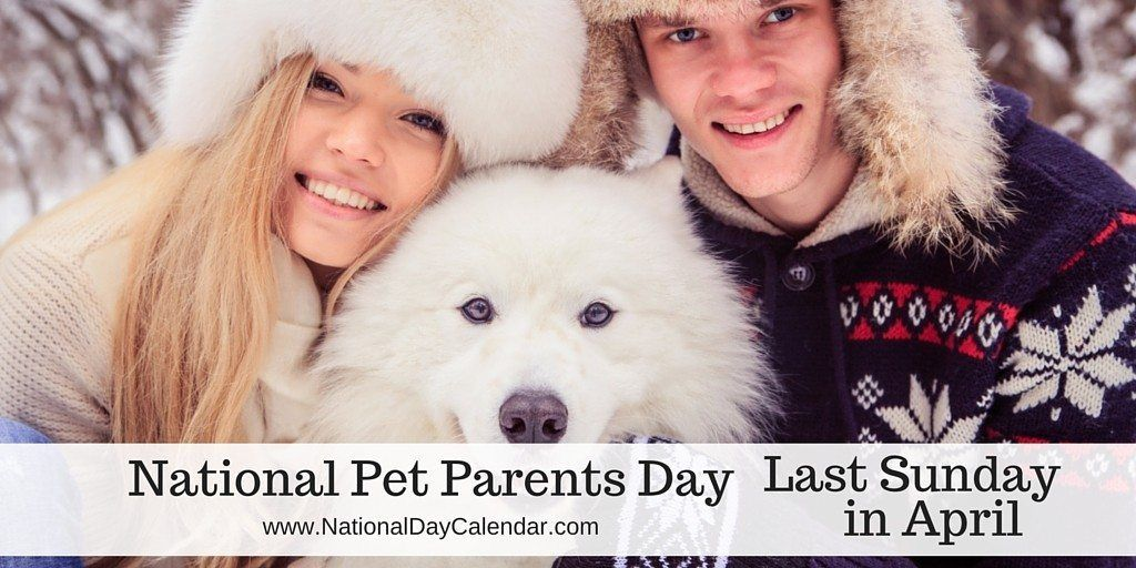 NATIONAL PET PARENTS DAY Last Sunday in April in 2020