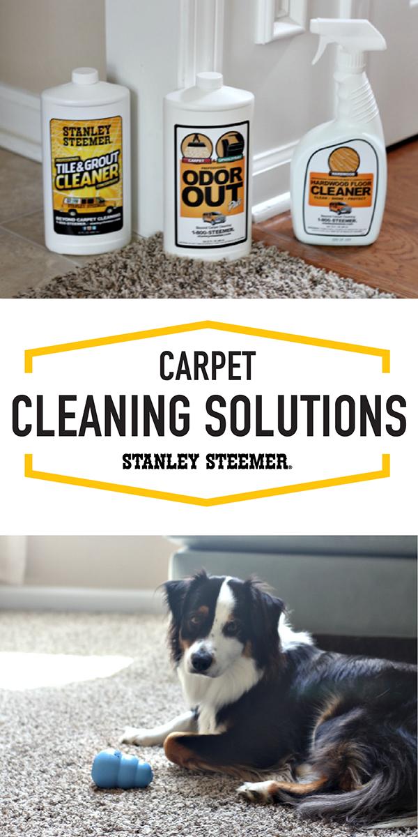 Stanley Steemer Carpet Cleaning San Go Carpet Vidalondon