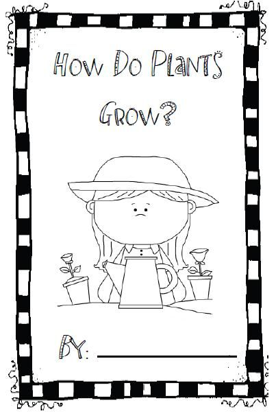Mrs. Johnson's First Grade: More Henry and Mudge, Pop the