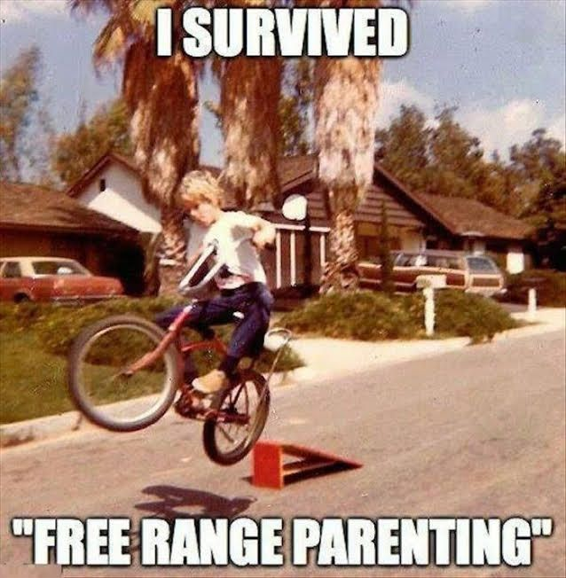 Image result for free range parenting funny