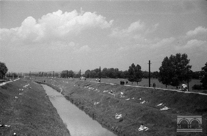 Błonia, rzeka Rudawa, Kraków - Hermanowicz