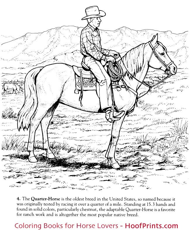 Http Www Hoofprints Com Horses Of The World Coloring Book