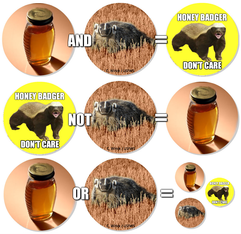 Boolean Logic, Semantic Search, Honey Badger