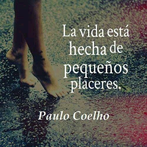 La Vida Esta Hecha De Pequeños Placeres Paulo Coelho