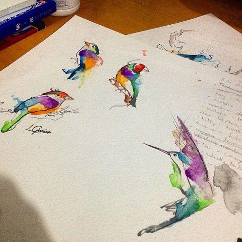 Olha os passarinhos na folha de rascunho haha • todos disponíveis caso alguém tenha interesse #birds #passarinho #watercolor #watercolortattoo #aquarela #aquarelatattoo #lcjunior #tattoo #tatuagem