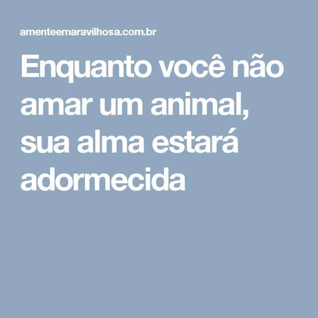 Enquanto você não amar um animal, sua alma estará adormecida