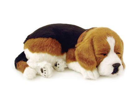 Beagle Sleeping Plush Toy Beagle Puppy Pets Beagle Dog