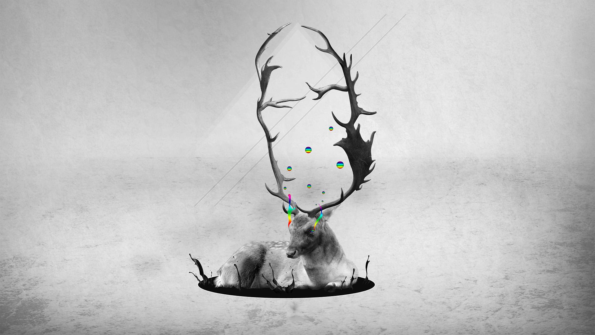 images for > deer artwork | art | pinterest | artwork