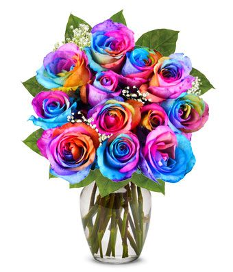One Dozen Wild Rainbow Roses At From You Flowers Rainbow Roses