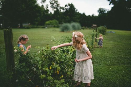 Picking berries for Mache magazine….Daisy, Lila, and Josie….http://thehursts.co/mache-magazine-made-from-scratch/