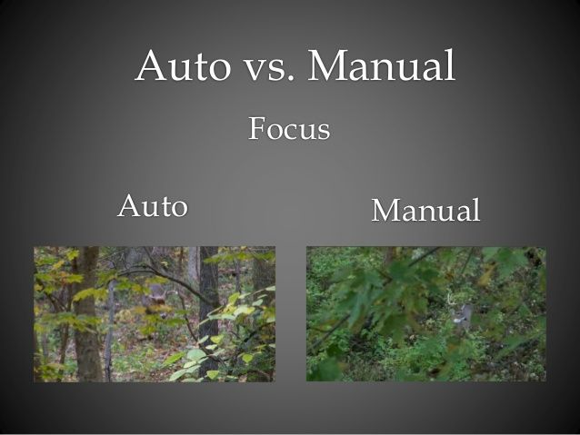 image result for auto vs manual focus auto vs manual focus rh pinterest com manual focus vs auto focus lens Photography Manual Focus