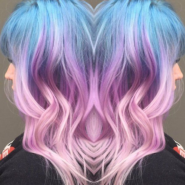 Arctic Fox On Blue And Pink Hair Hair Dye Colors Blue Ombre Hair