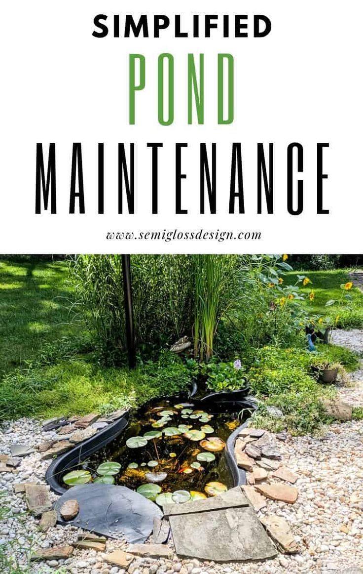 Easy Backyard Pond Maintenance Tips Ponds Backyard Pond 640 x 480