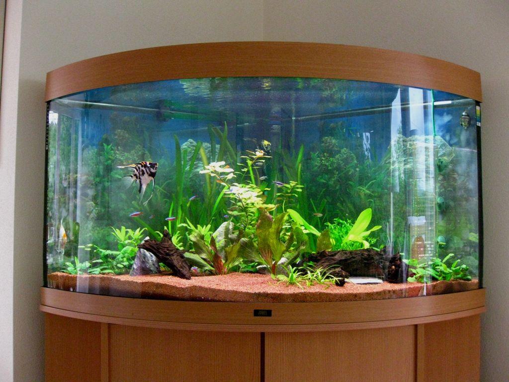 14 Splendid Diy Aquarium Furniture Ideas To Beautify Your