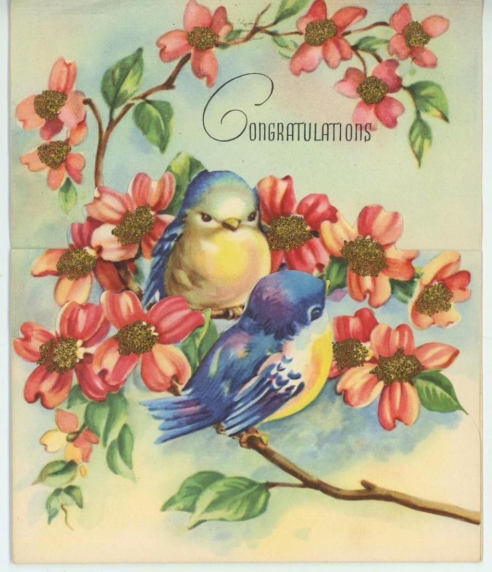 Vintage Bluebirds Blue Birds Pink Dogwoods Flowers Branches Greeting
