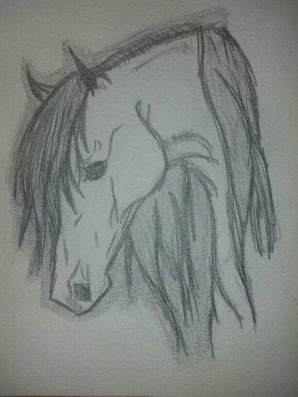 Easyhorsedrawings how to draw rearing horses drawings horse head drawing ccuart Image collections