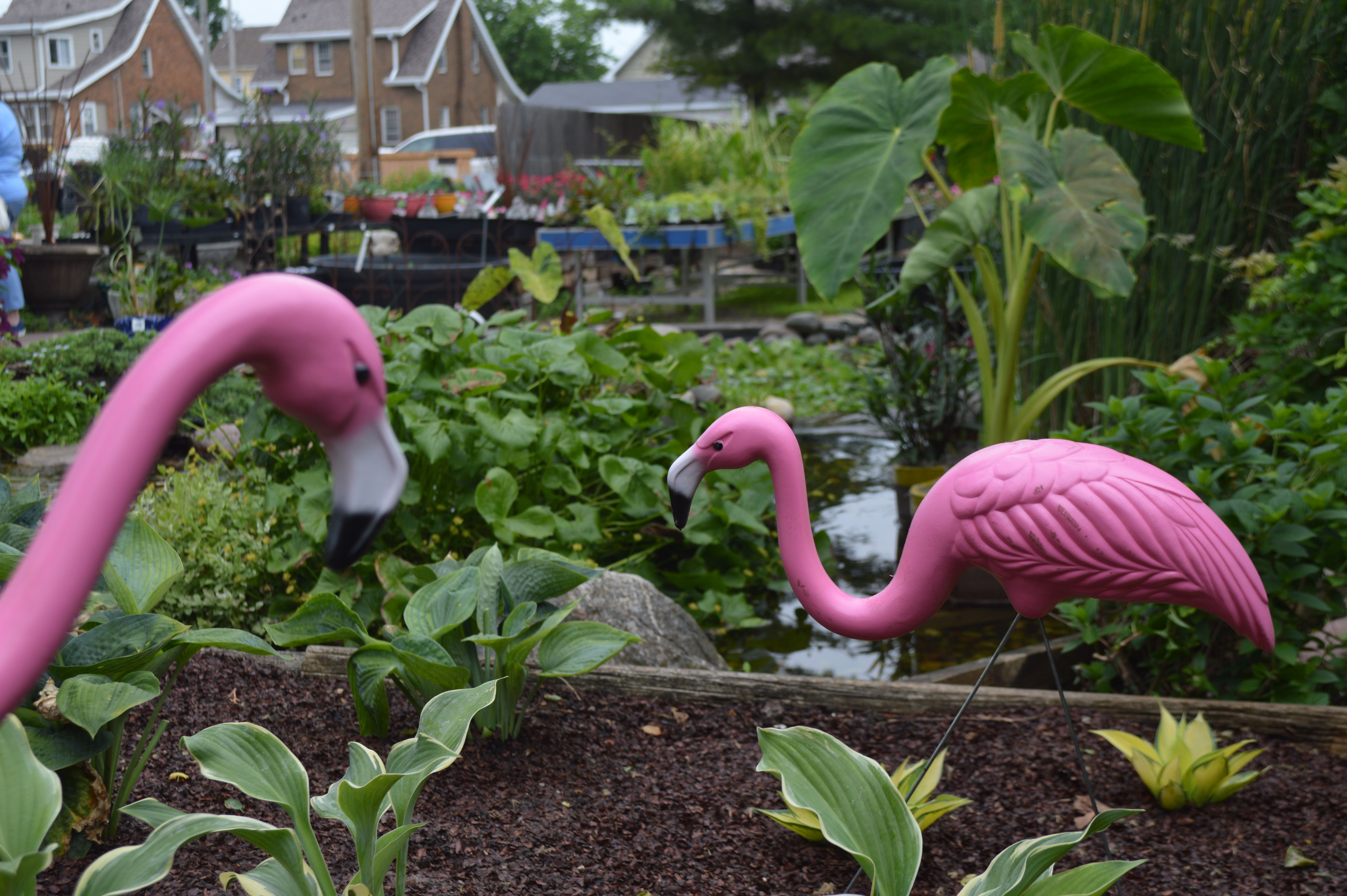 christmas pink flamingo lawn ornaments