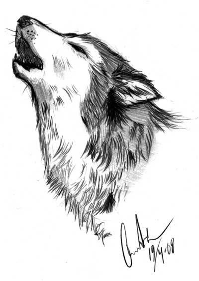 Wolf doodle 2 howling by nirac
