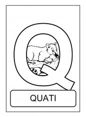 Alfabeto De Animais Q Para Colorir Alfabeto Atividades De Colorir