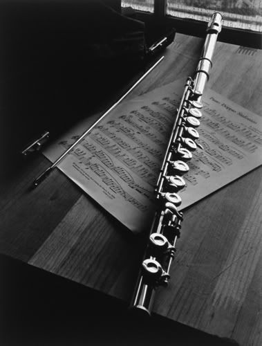 """This flute signifies Hamlet's reference in the quote """"...do you think I am easier to be played on than a pipe? Call me what instrument you will..you cannot play upon me."""" This refers to Hamlet's recollection of Rozencrantz and Guildenstern and their lies. He knows what they are doing and says that they can not fool him and play him so easy, just like a flute."""