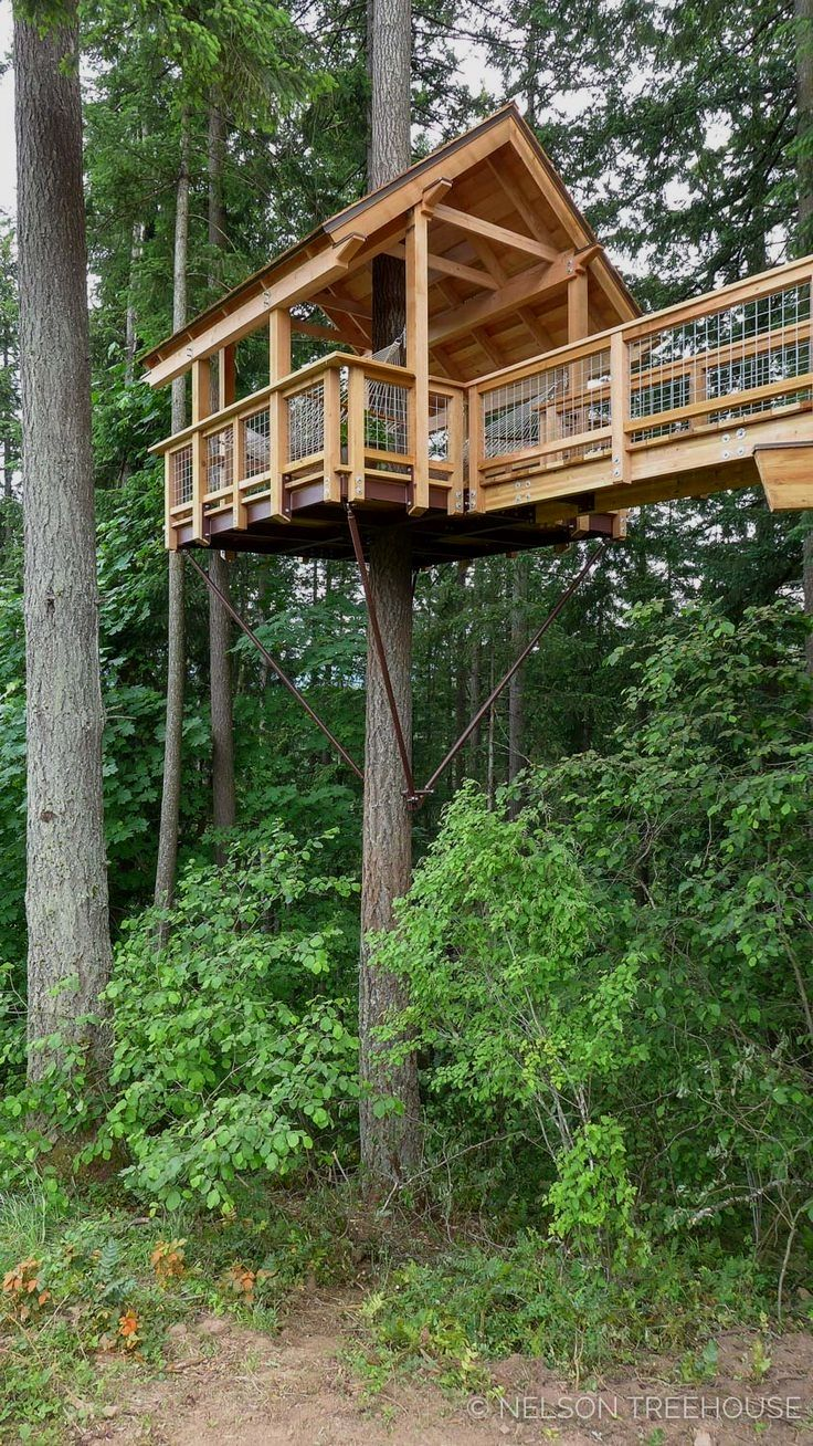 Best Tree House Designs Beautiful Tree Houses Tree House Designs Tree House Diy
