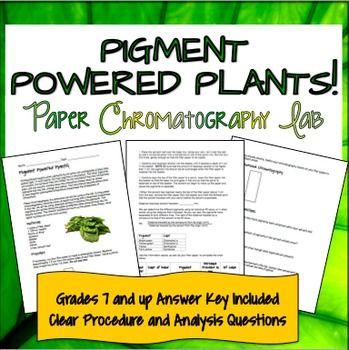 Paper Chromatography Lab- Pigment Powered Plants!   Biology ...