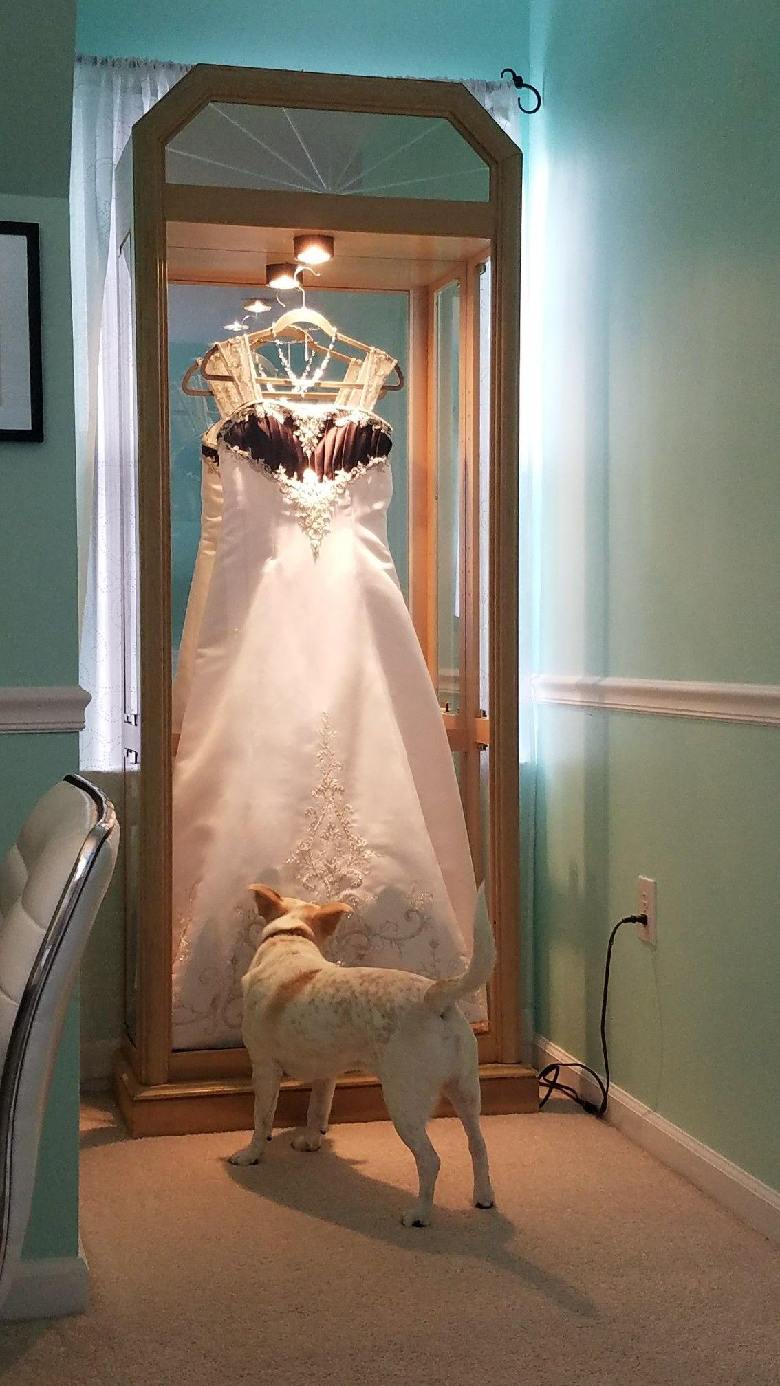 Framed wedding dress in a curio wedding dress