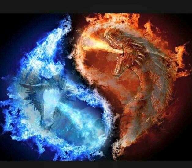 Dragon Ying Yang