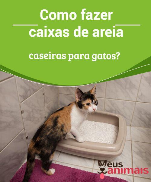 Caixas De Areia Caseiras Para Gatos Saiba Como Fazer Caixas
