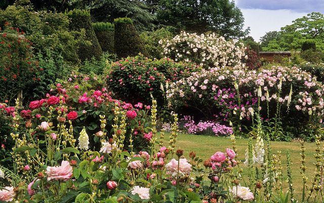 Pin On Pretty Gardens