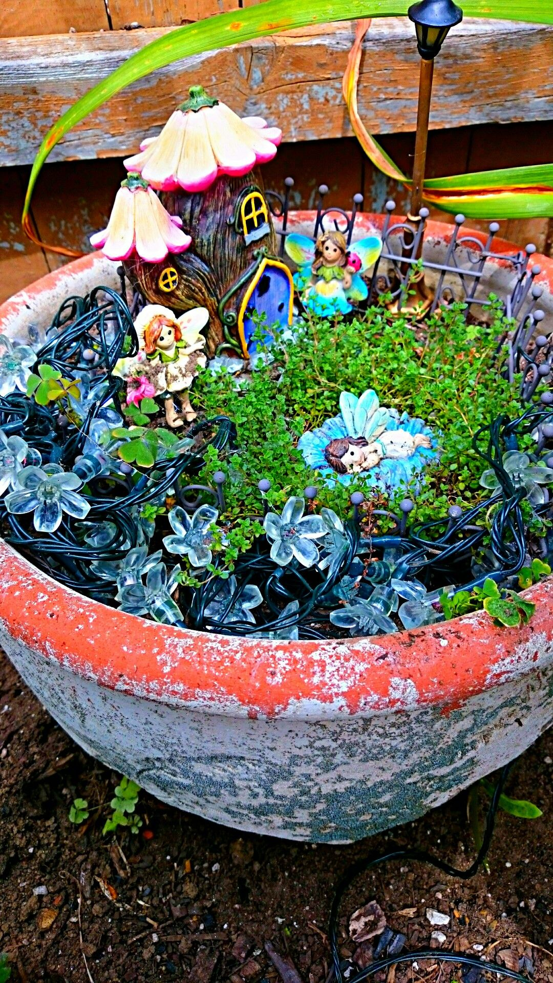 Solar Lights Twinkle At Night In This Fairy Garden