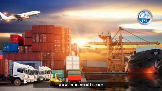 Reliable SeaFreight companies deliver the products with