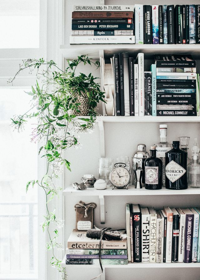 Hanging Plant Ideas Love This All White Bookshelf With The Subtle Pop Of Green