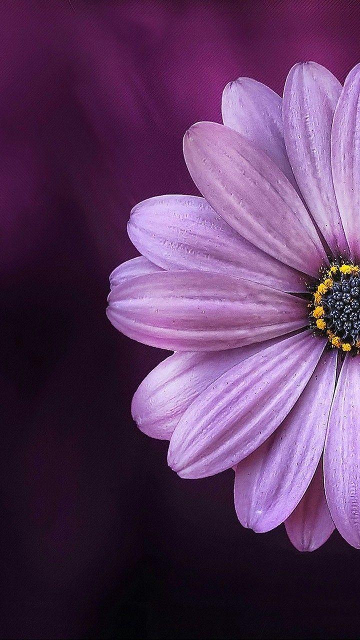I love flowers.... #flowersbackgroundiphone
