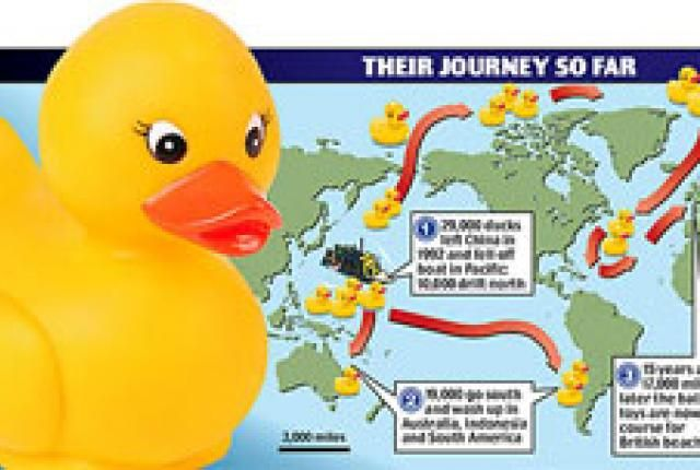 Rubber Ducky Flotilla Nearing Britain Rubber Duck Duck Eve Bunting