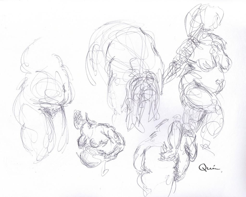 Drawing 40! Just some 1 min warm up sketches, but I quite like how scibbly they are Jaime Quinn art