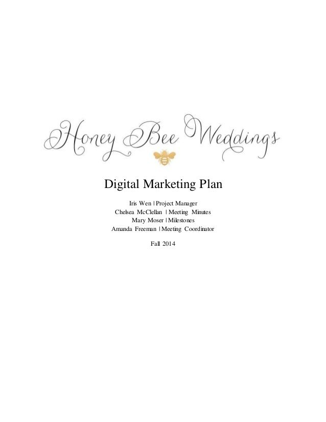 Digital Marketing Plan Iris Wen Project Manager Chelsea McClellan